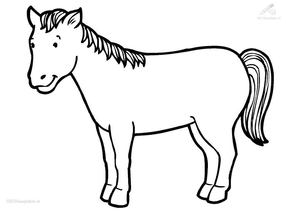 printable realistic horse coloring pages as well horse coloring pages