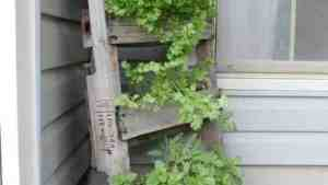 Upcycled Pallet As A Vertical Garden 1001 Gardens
