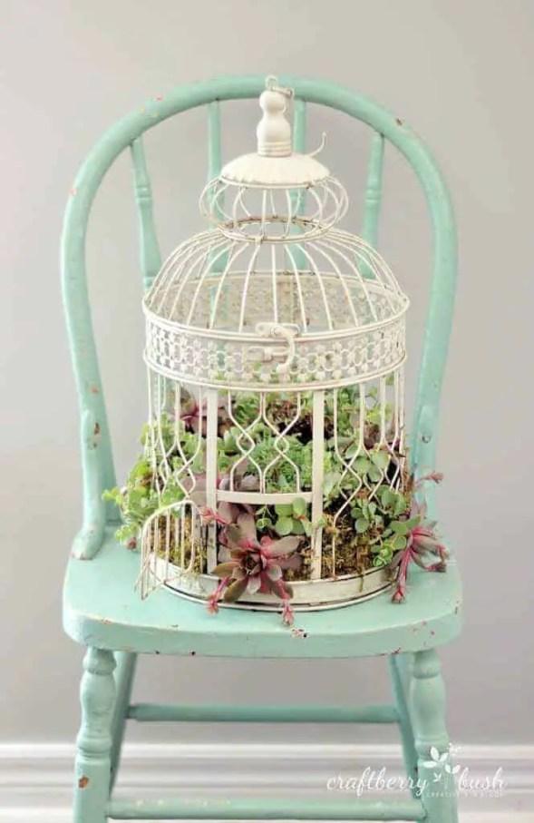 Diy: Transform A Birdcage Into Succulents Planter 1 - Flowers & Plants - 1001 Gardens