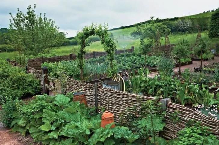 Step Step Vegetable Garden Raised