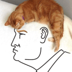 Candidate Portrait kitty trump