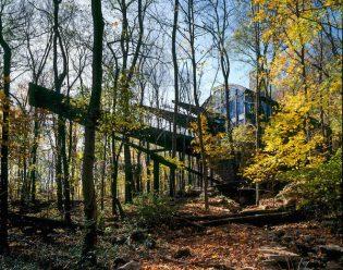 casa-floresta24