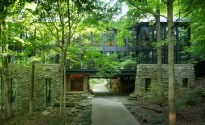 casa-floresta34