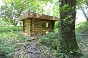 log-cabin-in-the-forest-9