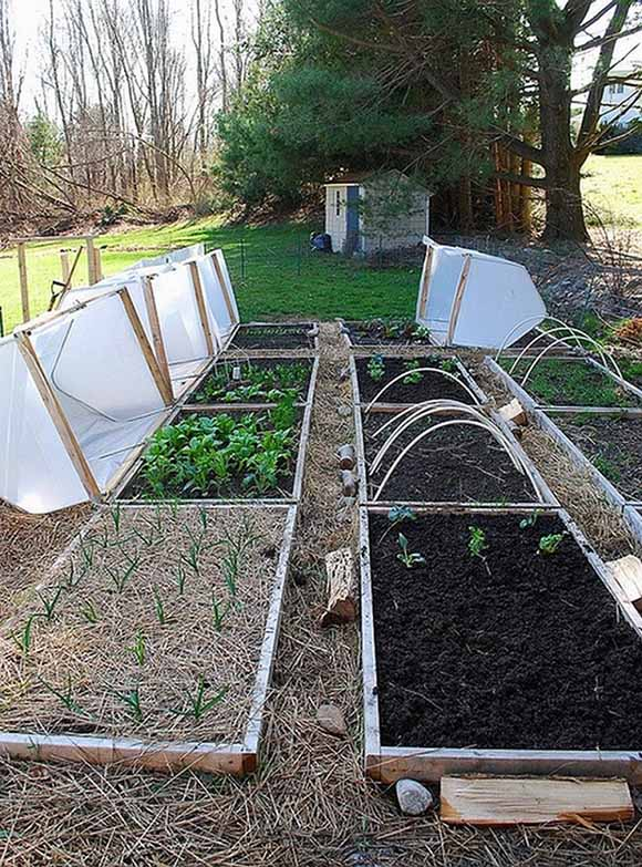 Raised-Bed-Cover-12