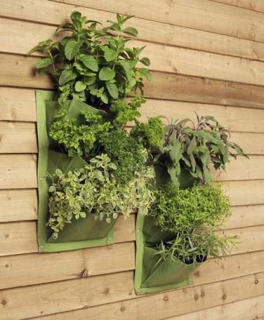 salad-vertical-garden-5