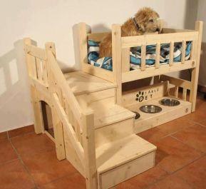 amazing-dog-house-10