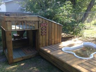 amazing-dog-house-12