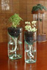 como-reciclar-garrafas-de-vidro-13