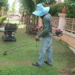 Садовник в Паттайе