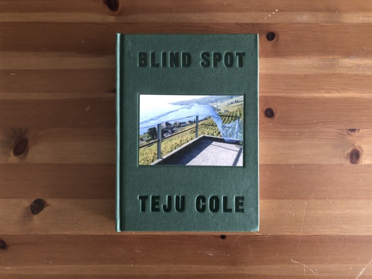 Blind Spot book cover.