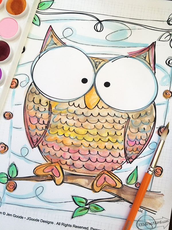 Owl Coloring Pages 100 Directions