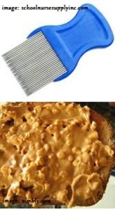 lice pick