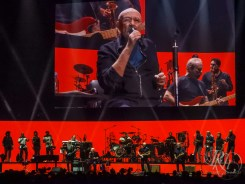 phil collins rkh images (8 of 44)