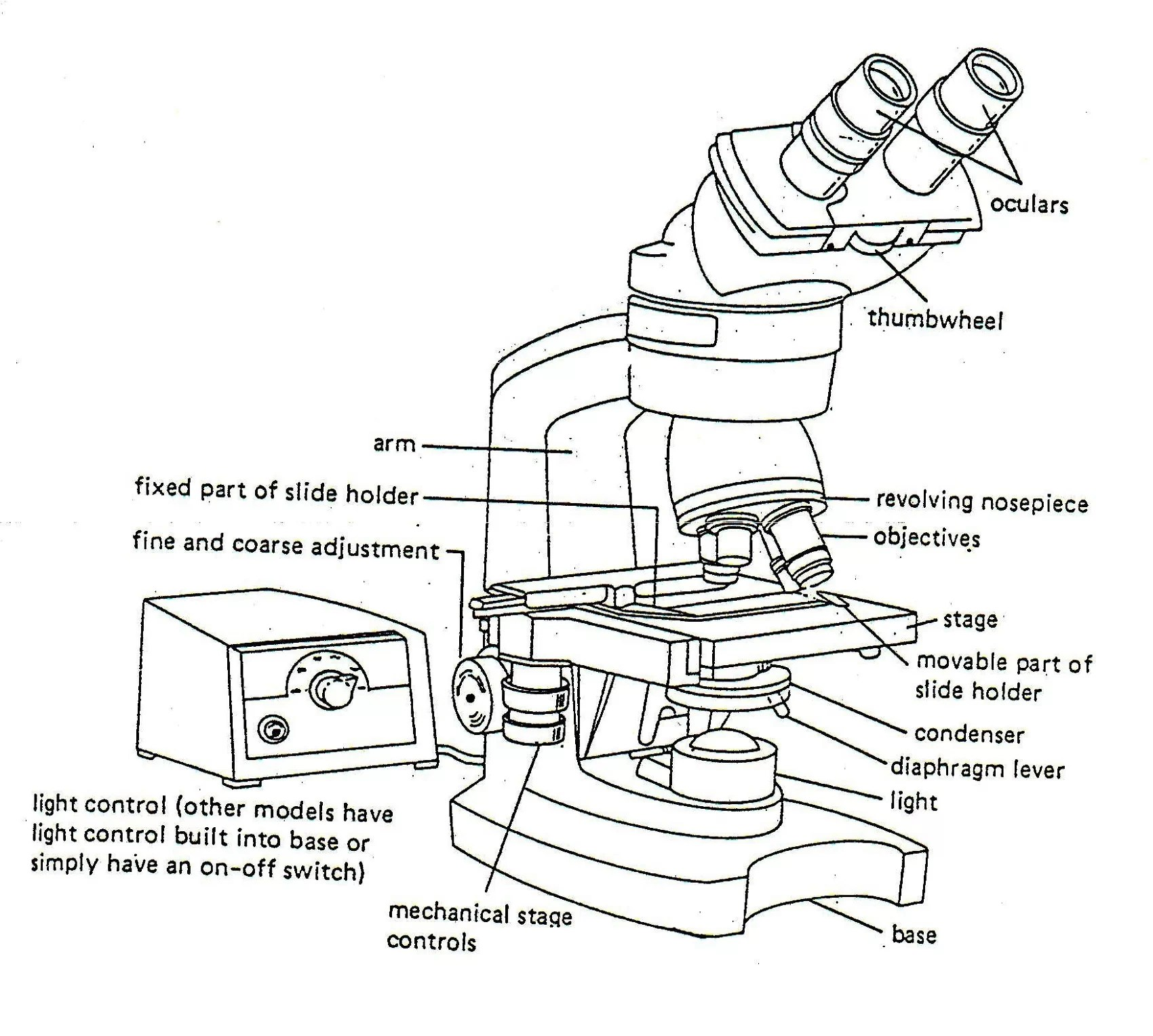 Diagrams Of Microscope Printable