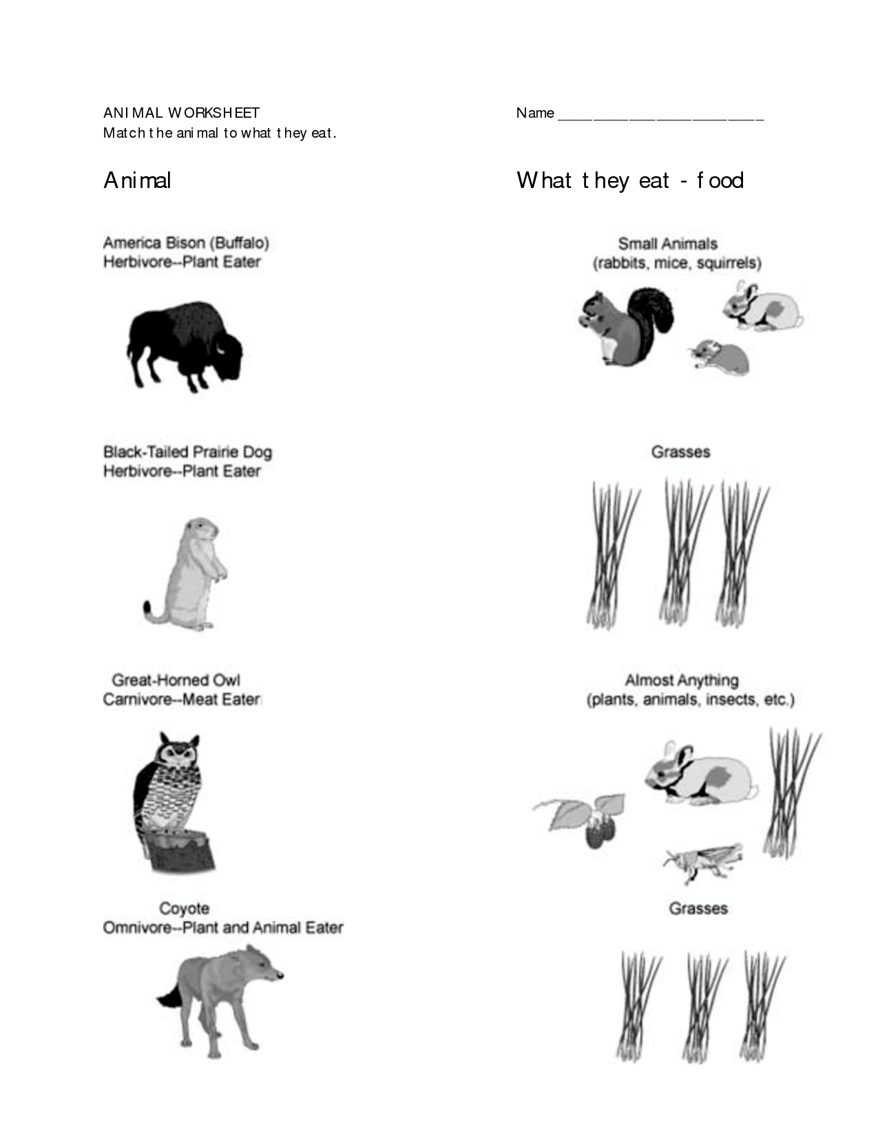 Worksheets For 1st Grade