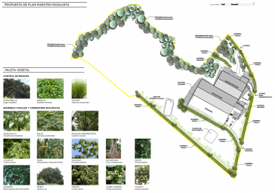 Kitty Products Factory Landscape and Master Plan Design by 10˚84˚Studio