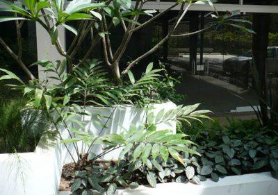 Architect-Design-Landscape-PN-10