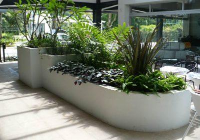 Architect-Design-Landscape-PN-12