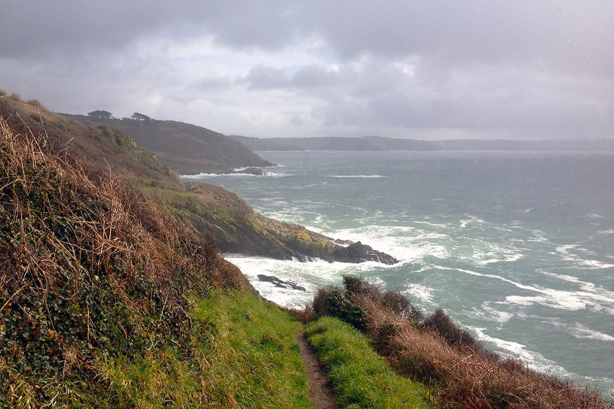 Near Portloe, South West Coast Path, Cornwall UK. Copyright Stephanie Boon, 2018. All rights Reserved.