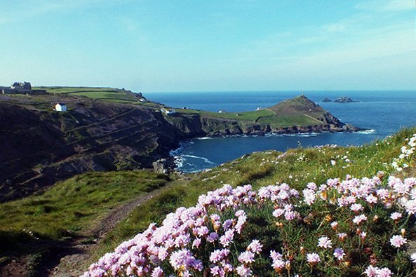 View of Cape Cornwall, over a mound of pink thrift, Cornwall, UK. Copyright Stephanie Boon, 2018. All Rights Reserved