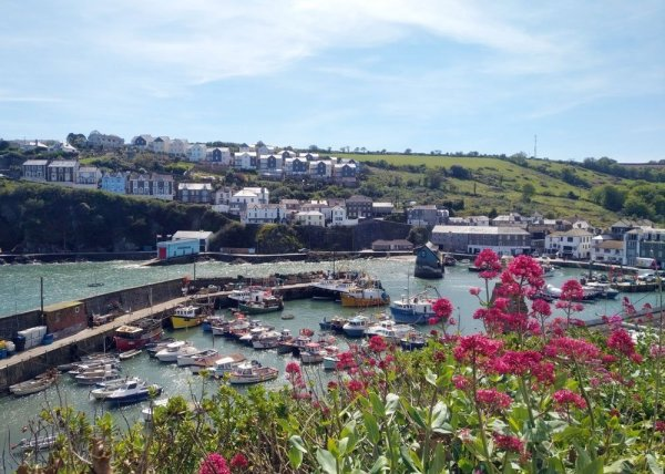 Mevagissey, Cornwall, 2019. View across Mevagissey Harbour from above.
