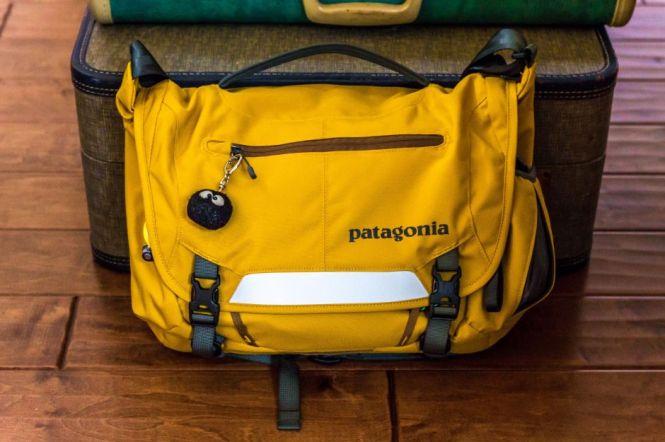 Patagonia MiniMass