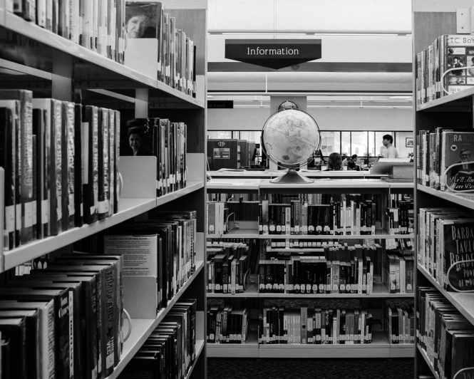 """""""At the Library"""" Cedar Park, 2016"""