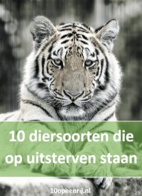 10 diersoorten die op uitsterven staan