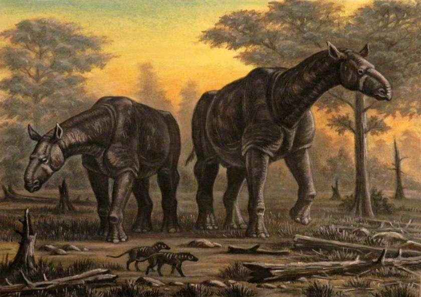 Paraceratherium Transouralicum - Aller grootste dieren op een rij