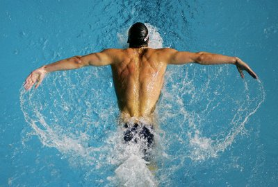 Which Swimming Stroke Is Best For Weight Loss