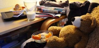 Warning Signs That Your Female Roommate Will Be a Slob female roommate - Teddy bear with bowl of fruit and milk
