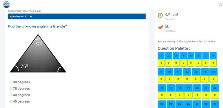11 Plus Angles Mock Exam