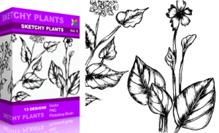 Vol.5 : Sketchy Plants