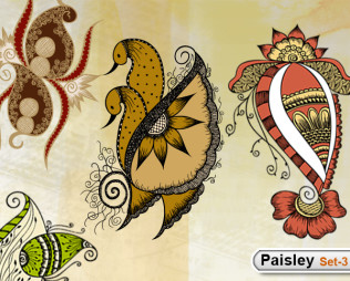 Paisley Designs -Set-3