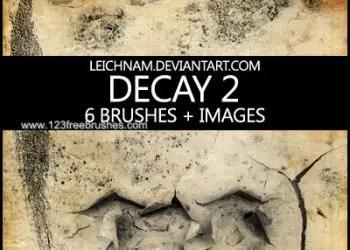 Decay Crack 1