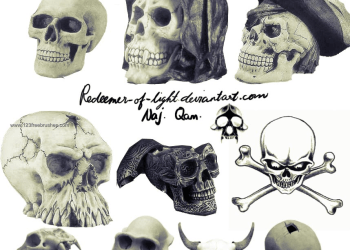 Vampire Human Skull