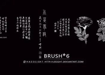 Photoshop 7 Flower Brushes