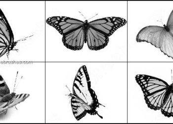 Butterfly Free Brushes