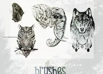 Elephant – Wolf – Owl – Butterfly
