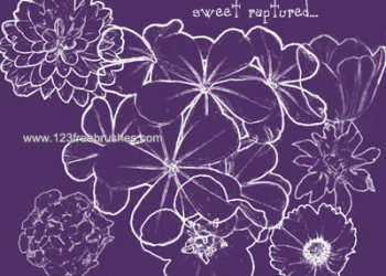 Flower Brushes Photoshop Cs5 Free Download