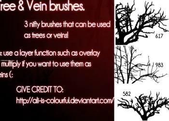 Trees or Veins