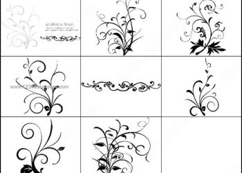 Swirl Floral Decorative Brushes for Photoshop