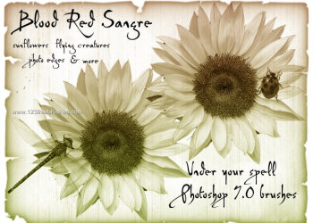 Ps 6 Flower Brushes Free