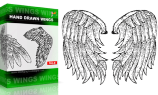 Hand Drawn Wings Set.1 | Vol : 8