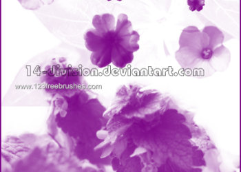 Flower Brushes For Photoshop Cc