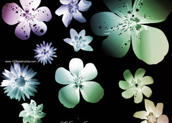 Floral Ornament Brushes For Photoshop Cs5