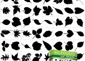 Leaf Silhouettes Free Vector and Photoshop Brush Pack