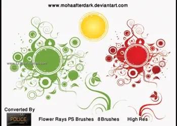 Flowers Rays
