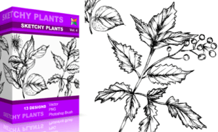Vol.4 : Sketchy Plants